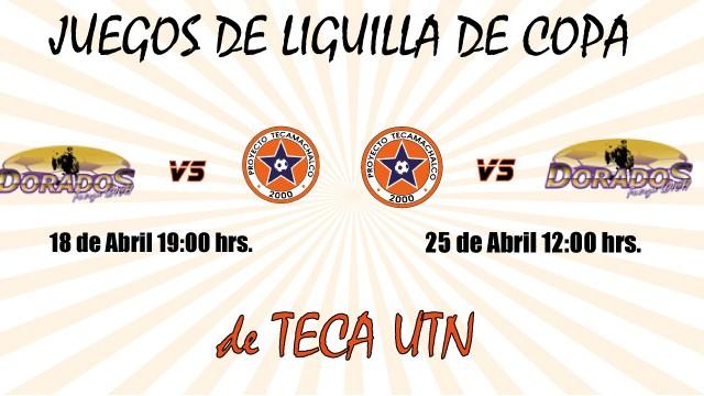juegos_liguilla_copa_tecautn